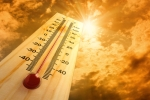 heat_thermometer