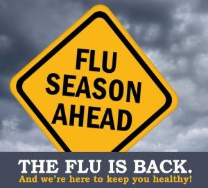 flugrasphic_flu ahead 2013